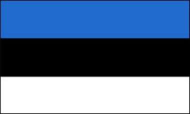 Flagge Fahne Estland 90x150cm