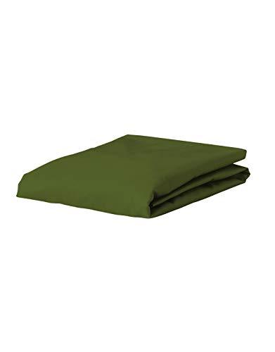 ESSENZA Spannbettlaken Premium Jersey Uni Baumwolle Grün, 180/200 X 200/220 cm