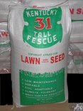 The Dirty Gardener Kentucky 31 Tall Fescue Lawn Grass - 50...