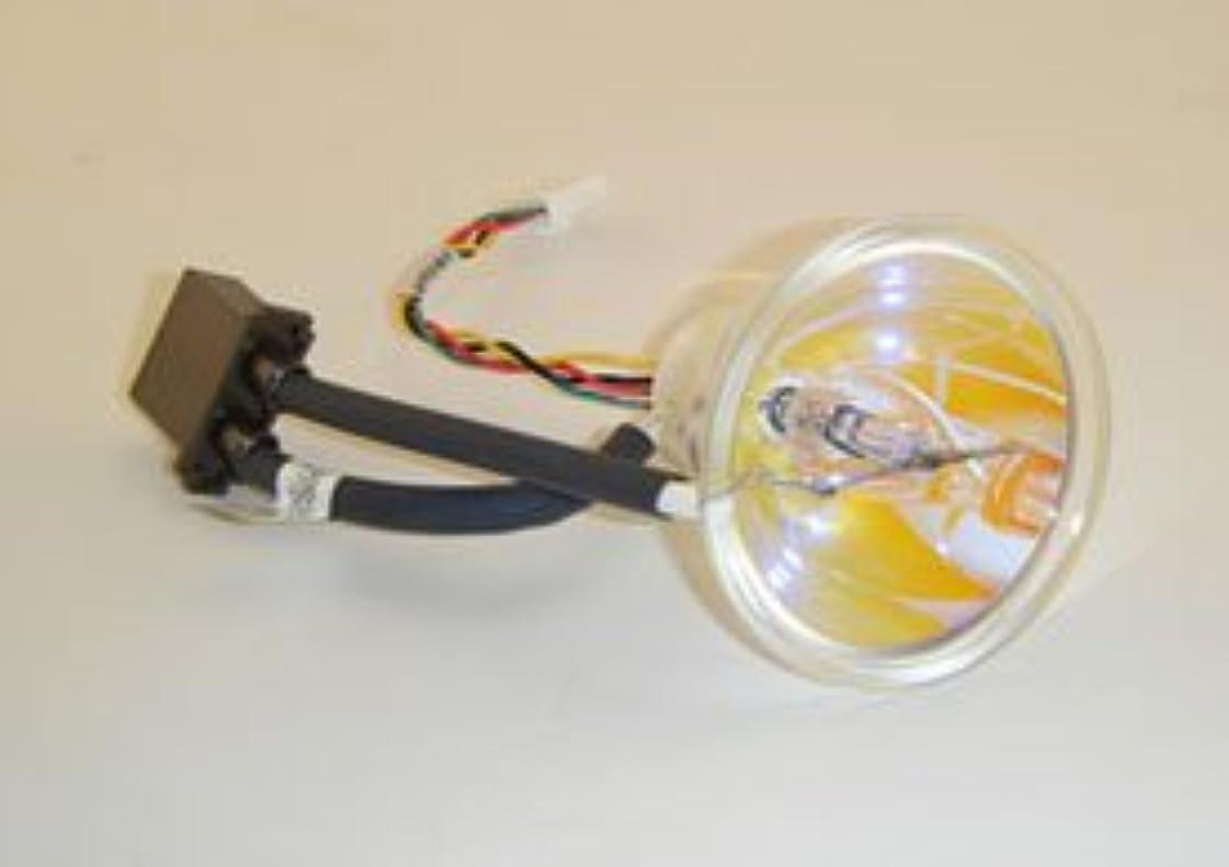 セール低下クスコ交換用for efoS omnicure s2001ライト電球