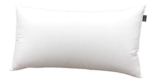 DHestia Hostelería - Almohada Núcleo de Fibra Hueca Siliconada y Funda de 100% Microfibra (120 cm)