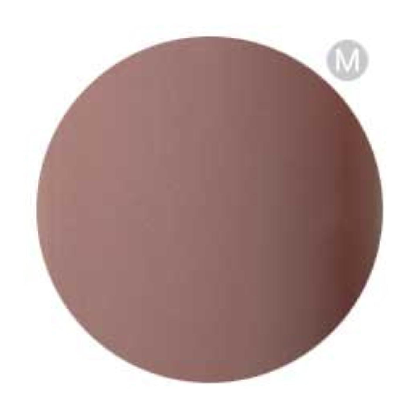 外側正当化する用心深いPalms Graceful カラージェル 3g 054 ココアブラウン