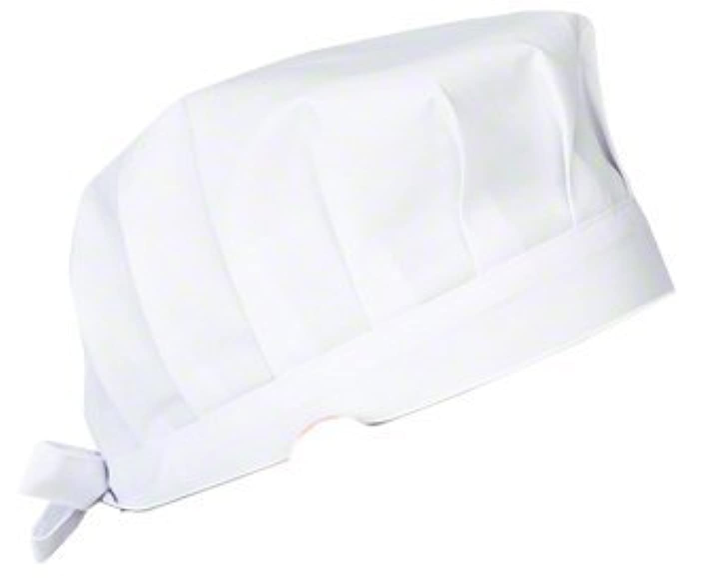 衝突キャンパス賃金ナガイレーベン NAGAILEBEN 看護帽子(2枚組) EP-511(フリー)ホワイト