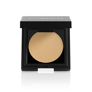 Stagecolor Cosmetics - Natural Touch Cream Concealer - LSF 25 (Yellow Beige)