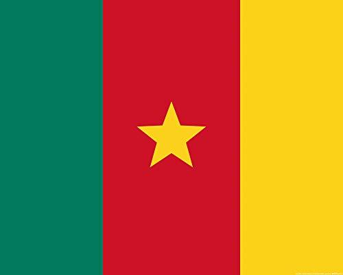 1art1 Kamerun - Flaggen Der Welt Poster 50 x 40 cm