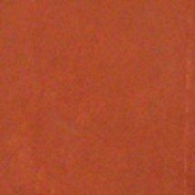 Walttools   Dry Shake Concrete Dust-On Color Hardener for Concrete Pigment Powder (Terra Cotta)