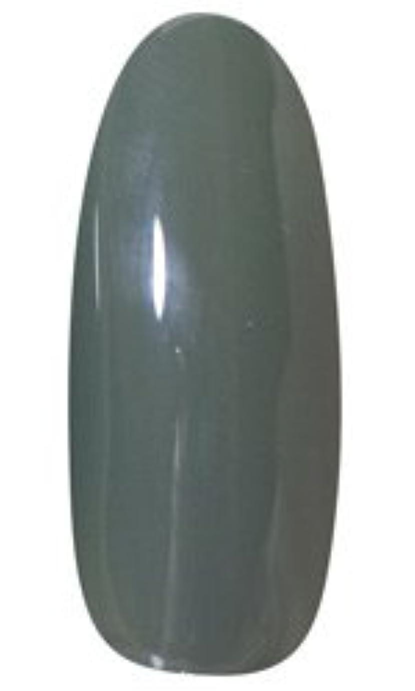 概念違法品★LEAFGEL PREMIUM(リーフジェル プレミアム) カラージェル 4g 408 ROKUSHOH(緑青)