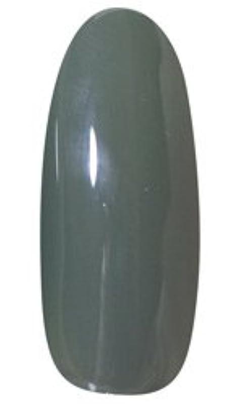 階下溶接理解★LEAFGEL PREMIUM(リーフジェル プレミアム) カラージェル 4g 408 ROKUSHOH(緑青)
