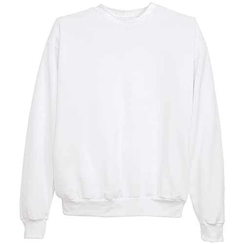 Hanes Men's EcoSmart Sweatshirt, white, Small