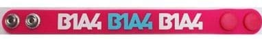 B1A4 1st Show Case in Japan ラバーブレスレット