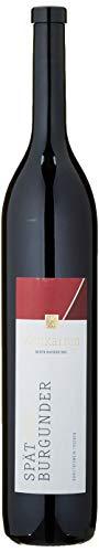 Achkarrer Schlossberg Spätburgunder Rotwein Qualitätswein trocken (1 x 1.5 l)