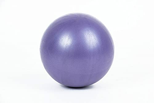 CKKHEW Pelotas de Yoga de PVC, Mini Pelotas de Fitness, Pelotas de Rebote, Pelotas de Yoga de Entrenamiento, Accesorios Deportivos y de Fitness(Purple)