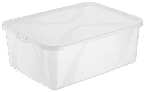 Rotho Arco Aufbewahrungsbox 10l mit Deckel, Kunststoff (PP) BPA-frei, transparent, 10l (36,3 x 26,6 x 13,4 cm)