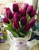 Bulbes de tulipes pourpres vivaces à planter - Plantes de bonsaï pour balcon à la maison. (25)