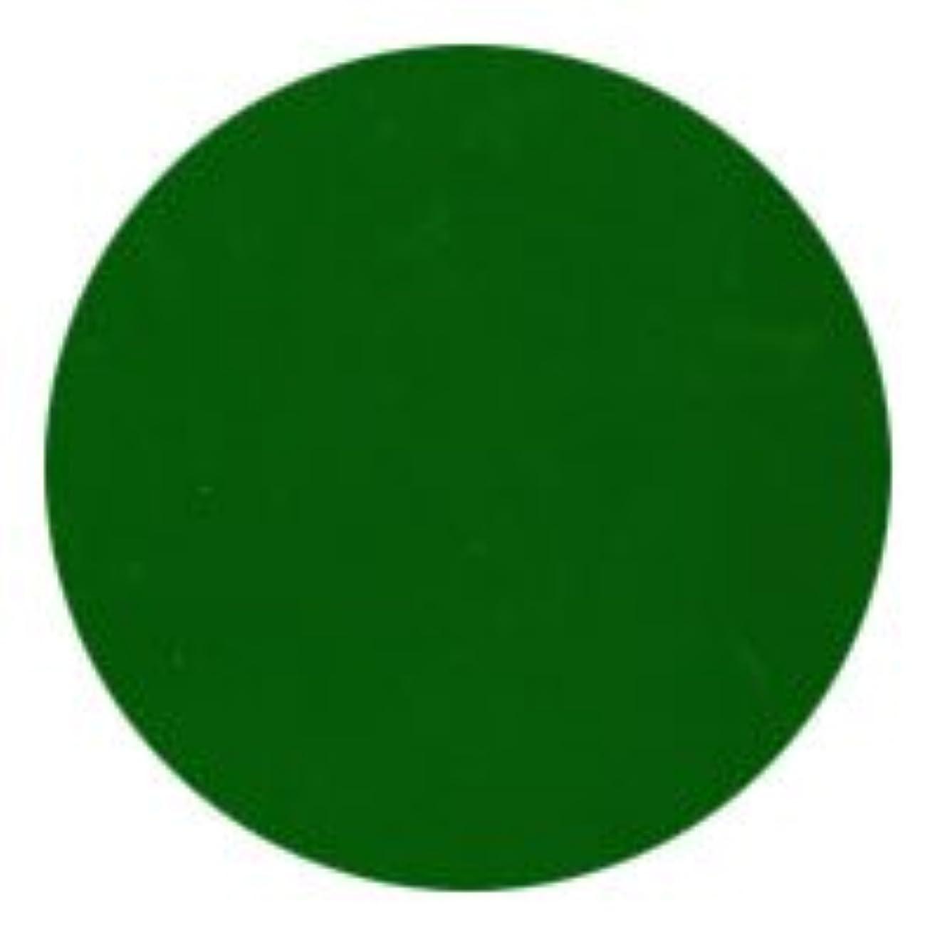 グレートバリアリーフ威する火傷★NFS MELTY GEL(メルティージェル) カラージェル 3g  3753 リーフグリーン