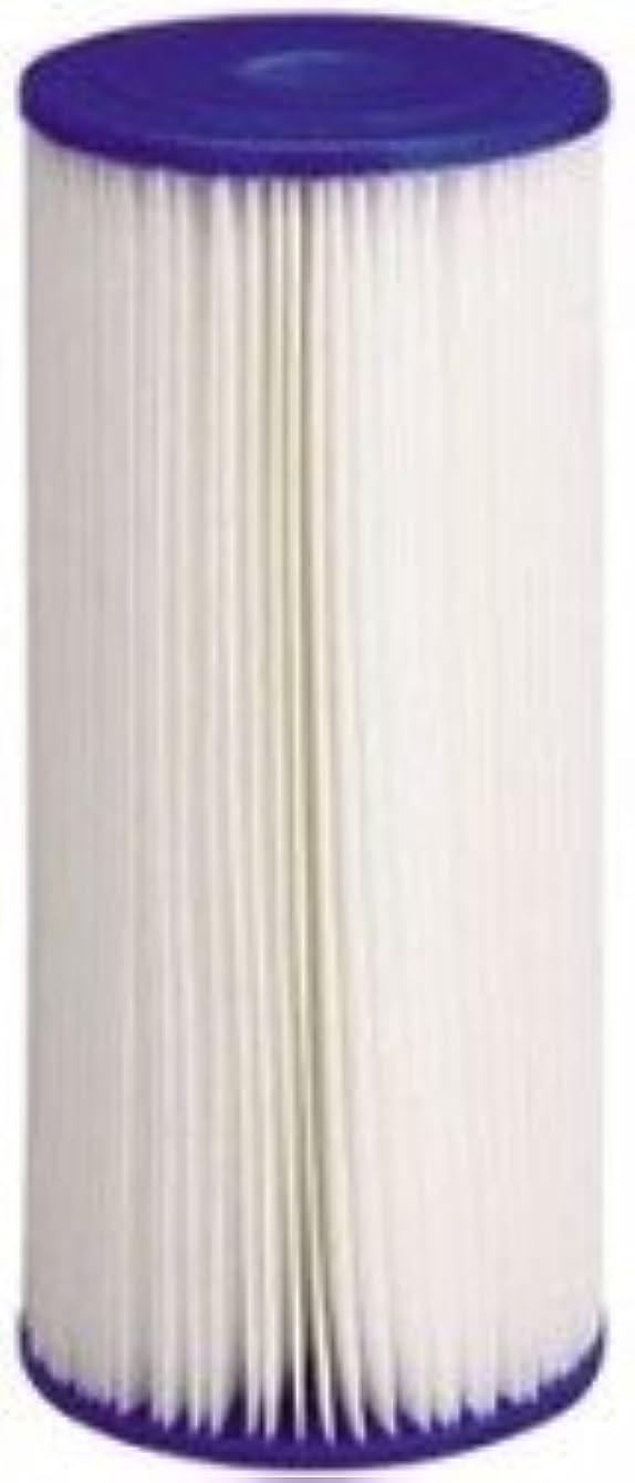 (Package Of 2) American Plumber W50PEHD Pleated Polyester Water Filters jfvhvbrurwraf43