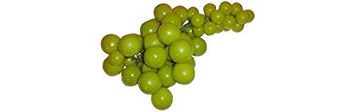 ERRO Weintraubenrebe XL - grün, Fake Food, Deko Obstattrappe, süße Geschenkidee