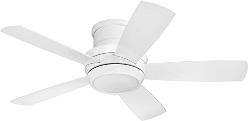 Flush Mount Ceiling Fan with LED Light and Remote by...