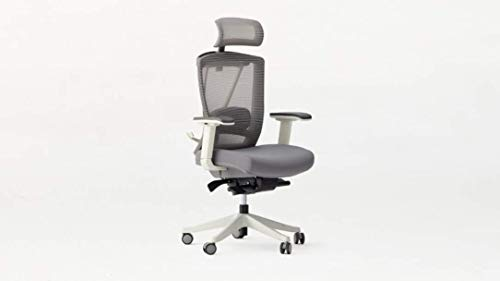 Autonomous Ergo Chair 2 - Premium Ergonomic Office Chair - All Black Adjustable Chair (Cool Gray)