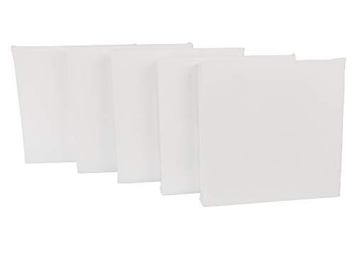 Bastidores Lienzo para pintar Premium - Ideal para pintura acrílica, oleo - Hechos de loneta alta calidad y triple capa de imprimatura con gesso, listos para usarse. set de 5...