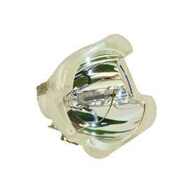 Replacement for Hp Hewlett Packard Designjet T1100 MFP Flourescent Lamp Light Bulb by Technical Precision