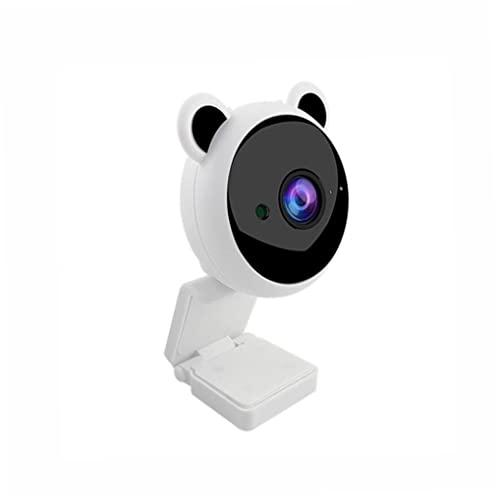 Cámara Mini Cámara USB 1080P HD Linda Panda Video Video Reducción de ruido Cámara con micrófono incorporado Acceso portátil blanco