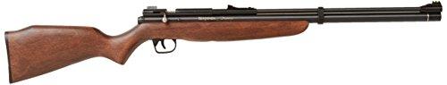 Benjamin BP9M22GP Discovery .22-Caliber PCP-Powered And Pump Air Rifle