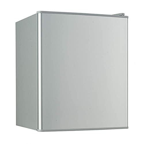 H.Slay Mini Nevera 21L con Congelador para Dormitorio Silencioso Vintage Plata Portátil para Refrigerar Leche Fresca