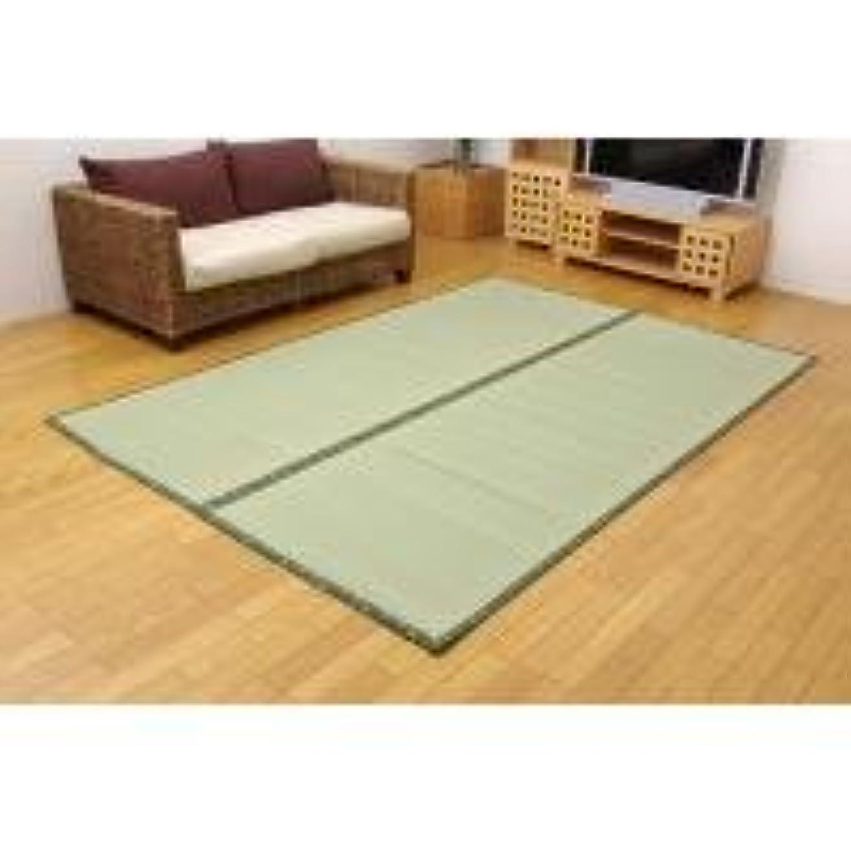 大胆なうまキャンプ1418936 フリーカット い草上敷 「F竹」 江戸間6畳(約261×352cm)