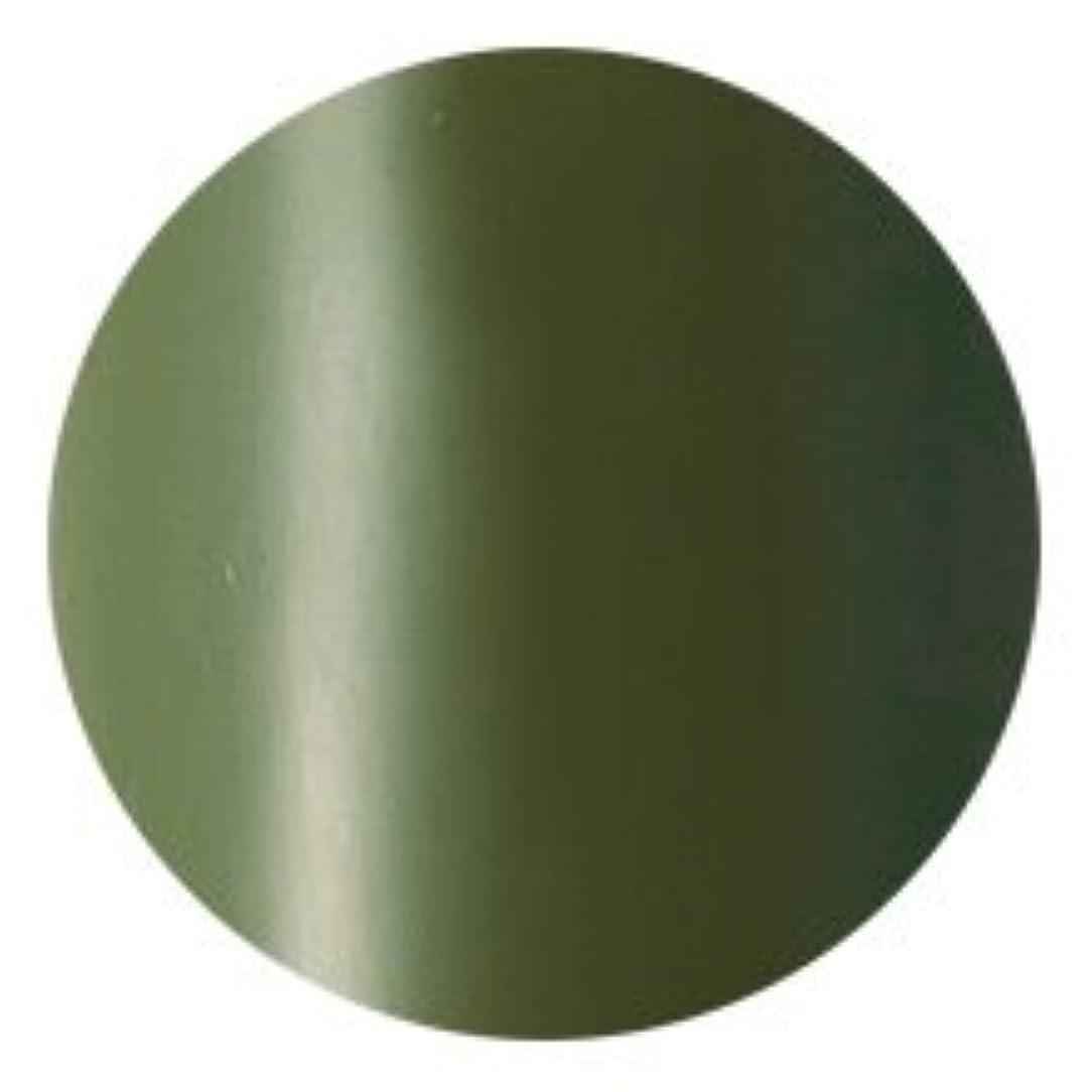 あまりにも捧げる花火Fleurir Color Gel M36 ピクルス(tat100489)