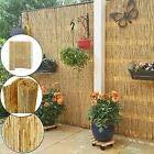 Bisen Schilfrohrzaun für den Garten, 1 m x 4 m