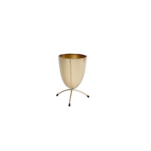 MLHJ Stand de Fleurs- Nordique Moderne Salon en Fer Forgé Balcon Fleur Étagère Balcon Simple Intérieur et Extérieur Fleur Étagère 22 * 15 * 15 cm (Couleur : Or)