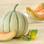 Les Graines Bocquet - Graines De Melon Hyb F1 Arisona Sachet Blanc 0.2 G - Graines Potagères À Semer - Sachet De 0.2Grammes