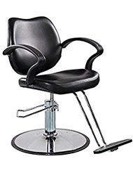 FlagBeauty Black Hydraulic Barber Styling Chair...