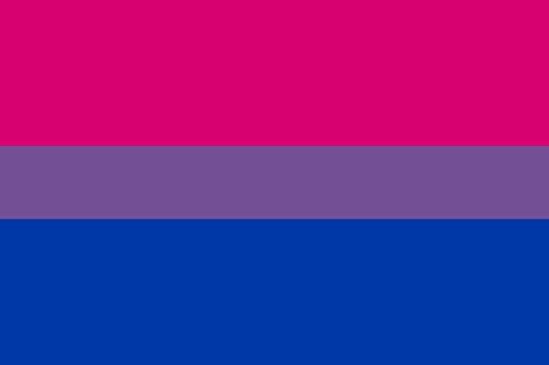 Durabol Orgullo Gay Bisexual(150 x 90cm) Satén DE Arcoiris Orgullo Gay