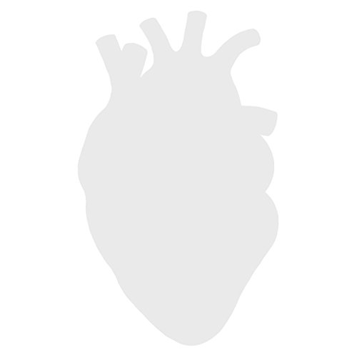 Anatomical Heart Silhouette Cardiologist Logo - Vinyl Decal for Outdoor Use on Cars, ATV, Boats, Windows and More - White 6 inch
