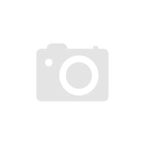 Aeolus AW08 XL - 185/55R15 86H - Winterreifen