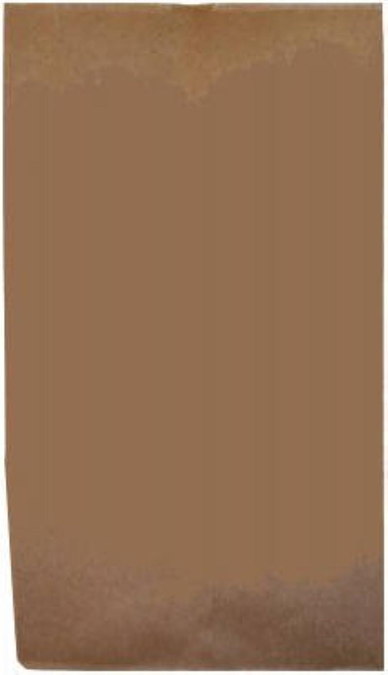 AMPAC TV20PL1M 20lb Natural Kraft Paper Bag (Pack of 500)