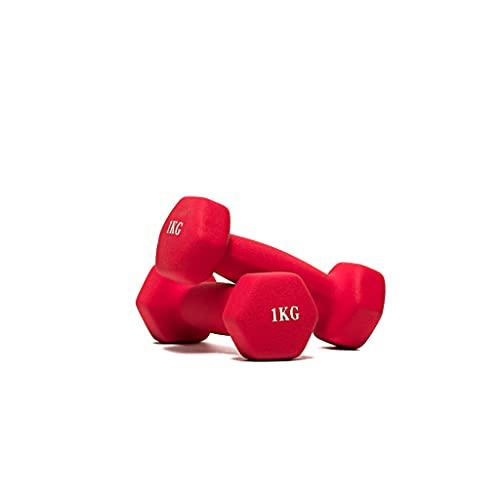 Vinyl dumbbells, dumbbells voor dames en heren voor fitness, krachtoefeningen, lichte en duurzame gewichten in een set met gewichten 2x1 kg