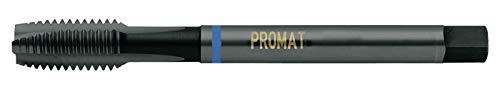 KAYSER GmbH 4000867360 - Promat 867360 Machos máquina M20 HSS-E Din376 anillo azul forma B