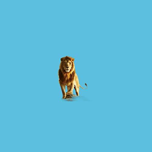 Lion (feat. CS LIT)