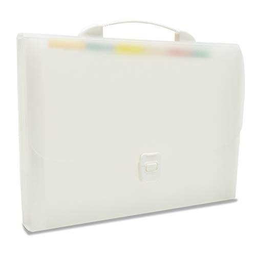 ドキュメントファイル ファイルボックス 拡張フォルダ 13ポケット ファイル (A4 大容量 ドキュメントファイル) 書類/ファイル 整理 収納ケース 分類用インデックス付 オフィス用品 出張収納 ラベル付き (ホワイト)