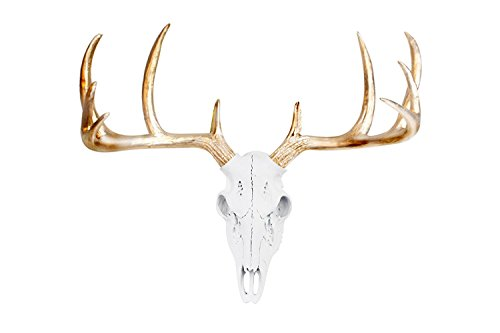 Wall Charmers Large White + Gold Antler Faux Deer Skull Decor - 21 inch Faux Taxidermy Animal Head Wall Decor - Handmade Farmhouse Decor