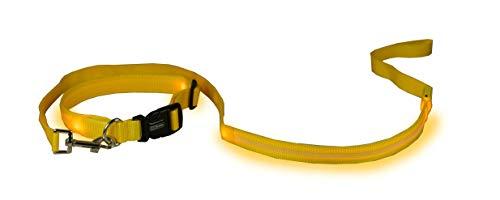 ECOBELLE® set Collier pour Chien Lumineux LED + Laisse pour Chien Lumineux LED, Haute Sécurité et Visibilité, USB Rechargeable (avec 2 Câbles USB), Couleur JAUNE. Laisse 1.20m, Taille Collier SMALL 35-43cm (réglable)