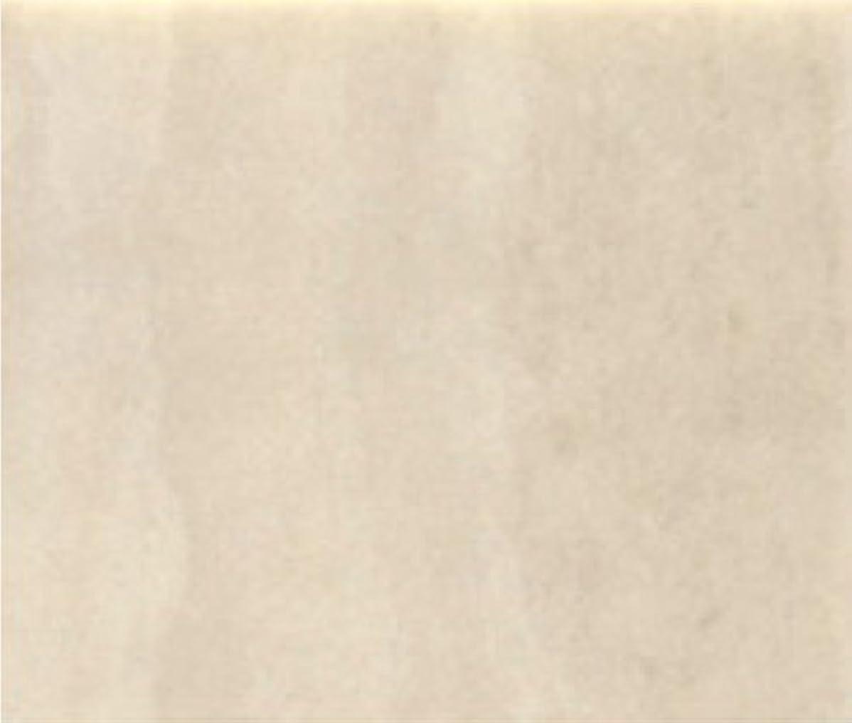 下に向けますナンセンス燃料サンゲツ クッションフロア ライムストーン (長さ1m x 注文数)型番: HM-2070 01M