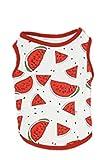Crea - Camiseta de algodón para perro con diseño de frutas para primavera y verano (4 tallas XXL), diseño de sandía