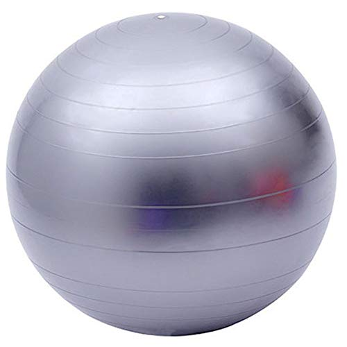 Fortitude Sports Pelota suiza de 65 cm con bomba   Pelota De Ejercicio Con Bomba Para Yoga, Fitness, Pilates, Balance Gym   Anti Burst, Antideslizante (Gris)