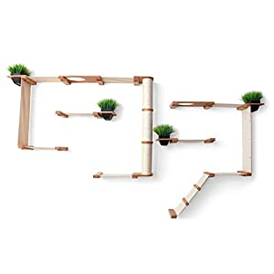 CatastrophiCreations Gardens Set for Cats Multiple-Level Wall Mounted Scratch, Hammock Lounge, Play & Climbing Activity…