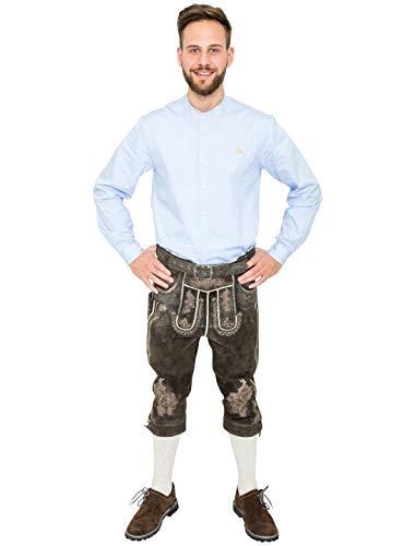 Deiters Trachten Lederhose Knielang Dunkelbraun für Herren, Trachtenhose Horst mit Gürtel für das Oktoberfest Größe: L