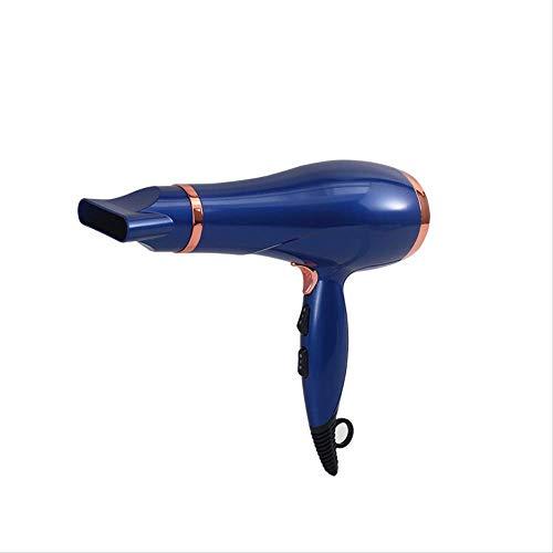 LTLJX Secador de Pelo: Iones Negativos Secador de Pelo Caliente y frío del Viento no se Pierde Nada de Pelo Caliente eléctrica Secador de Pelo Secador de Pelo.Azul. LUDEQUAN (Color : Blue.)